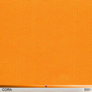 cora5001