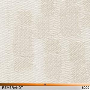 rembrandt6020-copy