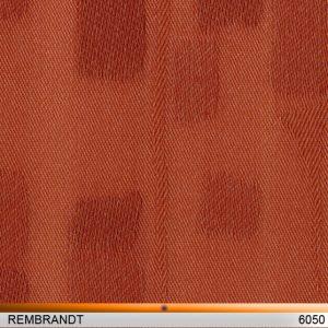 rembrandt6050-copy