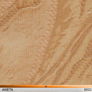 aneta6502-copy
