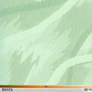 beata9619-copy