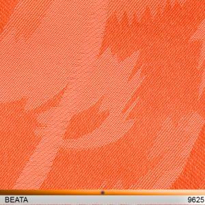 beata9625-copy