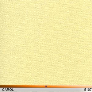 carol_5107-copy