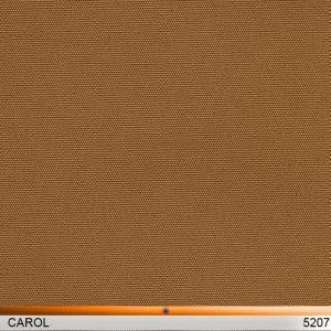 carol_5207-copy