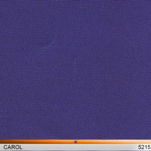 carol_5215-copy