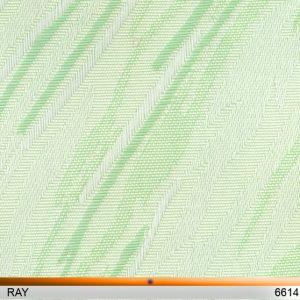 ray6614-copy