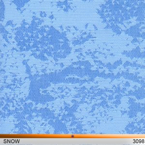 snow3098-copy