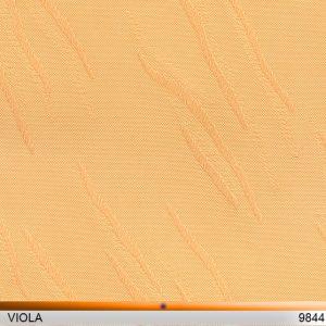viola_9844-copy