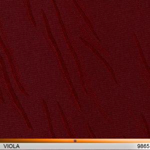 viola_9865-copy
