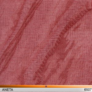 aneta6507-copy