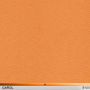 carol_5103-copy