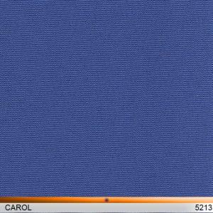 carol_5213-copy
