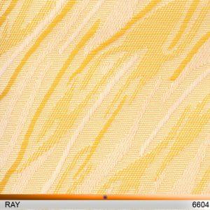 ray6604-copy