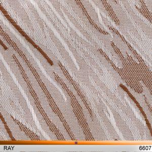 ray6607-copy