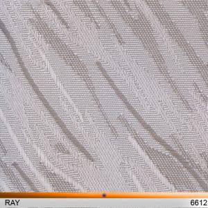 ray6612-copy