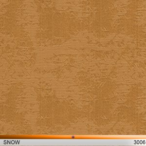 snow3006-copy