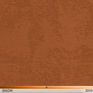 snow3008-copy