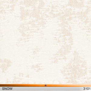snow3101-copy