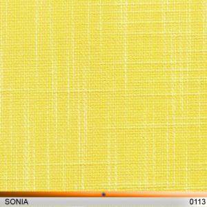 sonia0113-copy