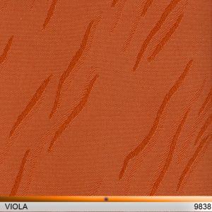 viola_9838-copy