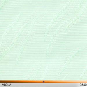 viola_9840-copy