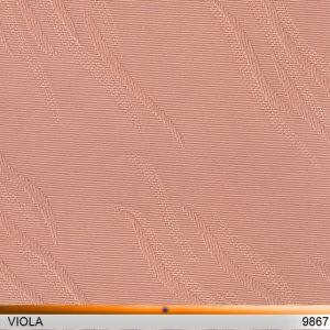 viola_9867-copy