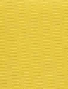 Stella Color 813